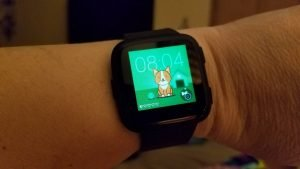 Fitbit Labs Timmy Clock Face