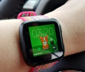 Fitbit Versa Timmy the Dog Clock Face