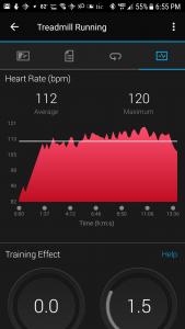 Wahoo TICKR Average HR 112 Treadmill