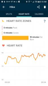 Fitbit Versa HR results