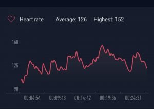 Amazfit Bip Heart Rate Chart