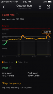 TicBand Heart Rate Estimate